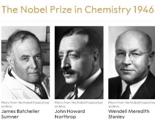 Giải Nobel Hóa học năm 1946